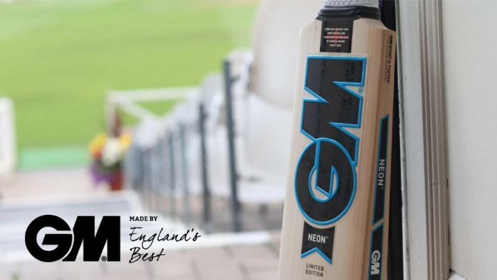GM Neon Cricket Bat 2019