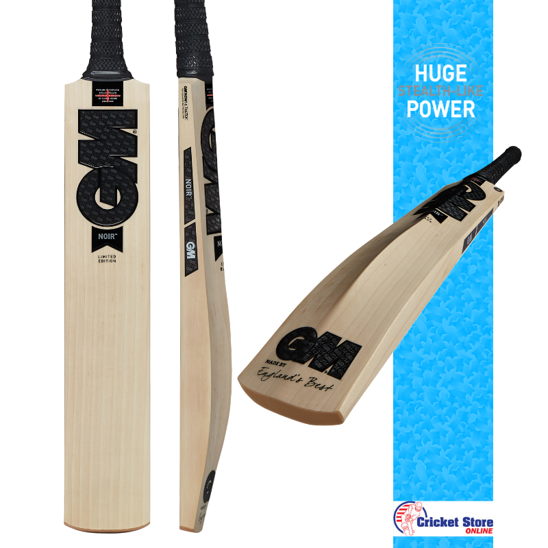GM Noir cricket bat