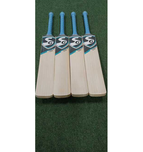 SG Hybrid 20 Ultimate Cricket Bat