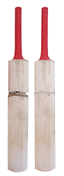 What is Storm Damage in cricket bats